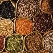 cumpără Seminte de legume