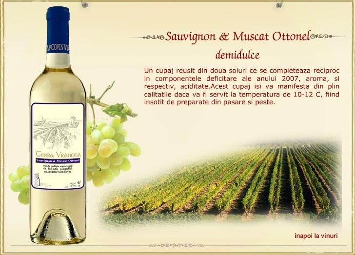 cumpără Souvignon & Muscat Ottonel