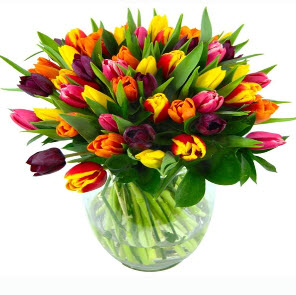 Buy Bouquets of fresh flowers