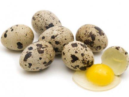 cumpără Ou de prepelite