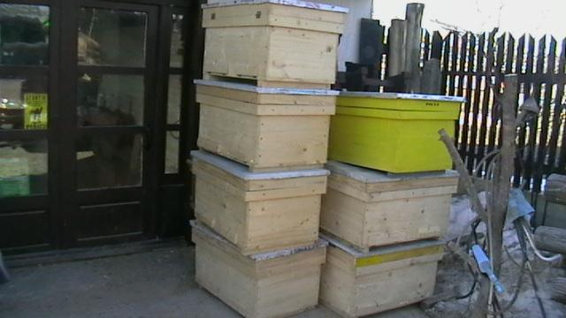 cumpără Stupi pentru albine din lemn
