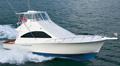 cumpără Yachts