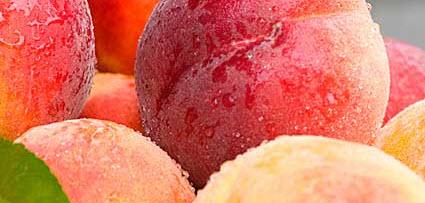 cumpără Fructe bio