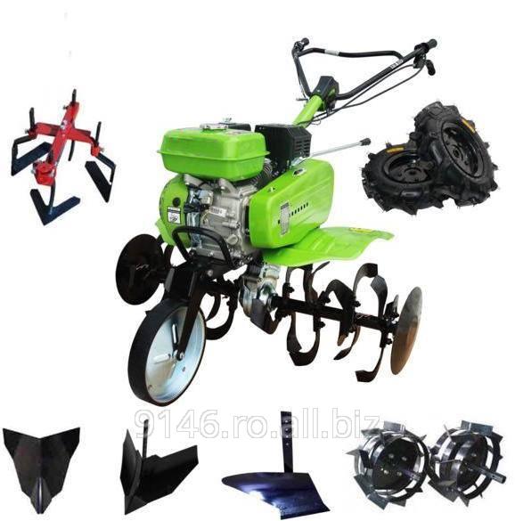 cumpără Motosapa - GD-500B3