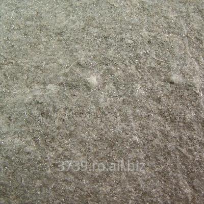 cumpără Sist Gneis Argintiu Scapitat