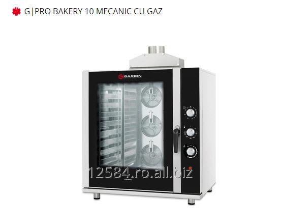 cumpără Cuptor profesional G PRO BAKERY 10 MECANIC CU GAZ