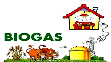 cumpără Fabrica de biogaz