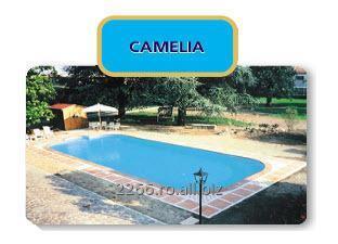 cumpără Piscina Camelia