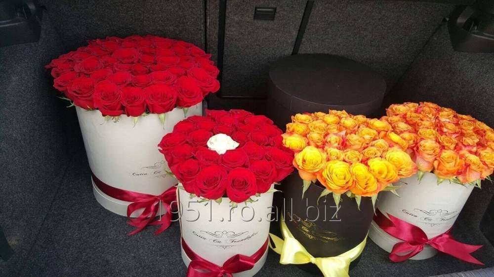 cumpără Cutii din carton pentru flori