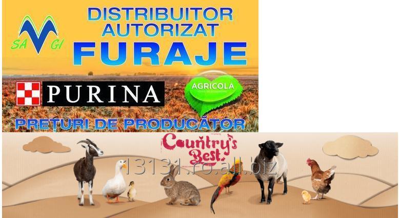 cumpără Furaje pentru animale