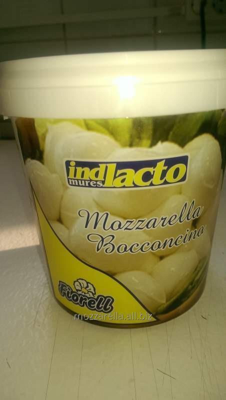 cumpără Mozzarella Bocconcino