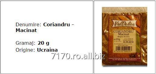 cumpără Coriandru