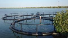 Water bioresources