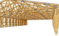Structuri şi acoperişuri din lemn