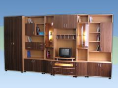 Biblioteca Ioana