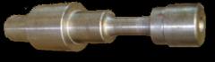 Pinioane