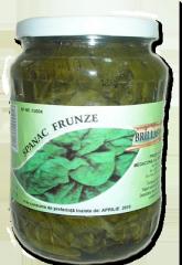 Spanac frunze