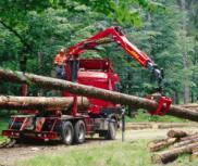 Macarale forestiere reciclare