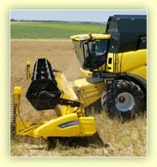 Productia agricola si depozitata