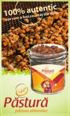 Pastura, painea albinelor