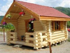 Casa din busteni