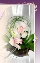Aranjamente florale birou