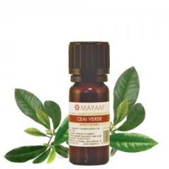 Extract de Ceai Verde (Camelia sinensis)