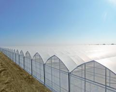 Film greenhouses