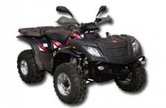 Eectric ATVs