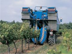Harvesters for wine growing and winemaking