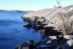 Limitatoare ecologice de poluare maritima