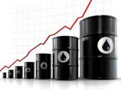 Acids of petroleum