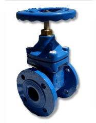 Resilient seated gate valve
