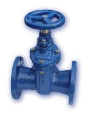 Oval body gate valve