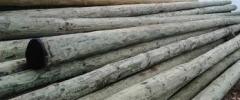 Stalpi de lemn