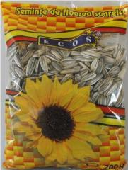 Calibrated sunflower Seeds