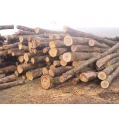 Round timber and logs