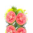 Guava Juice Pad