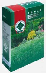Seminte gazon rezistent la seceta - 1 kg