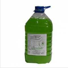 Detergent vase Appledish