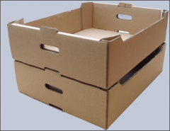 Boxes for fruits