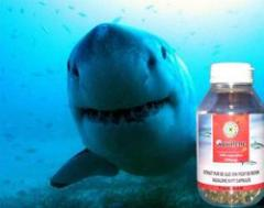Shark fat