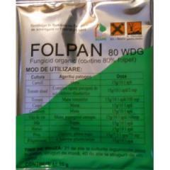 Fungicid Folpan 15 Gr