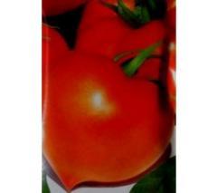 Seminte de tomate semideterminate Prekos F1 5g