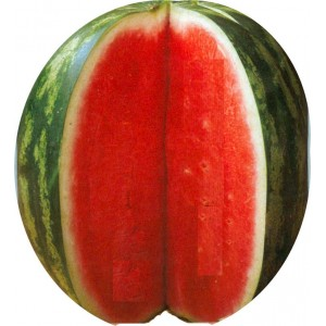 Seminte Pepene Crimson Sweet 2 Kg
