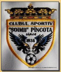 Embleme brodate pentru cluburi sportive