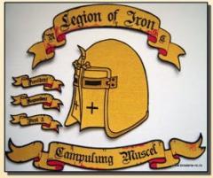 Embleme personalizate brodate la comanda