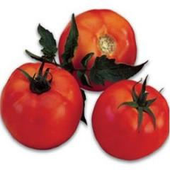 Tomato seeds Galina F1 500 Sem