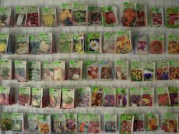 Seminţe de legume
