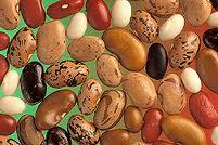Seminţe de fasole